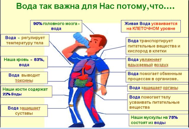 Значение воды - схема