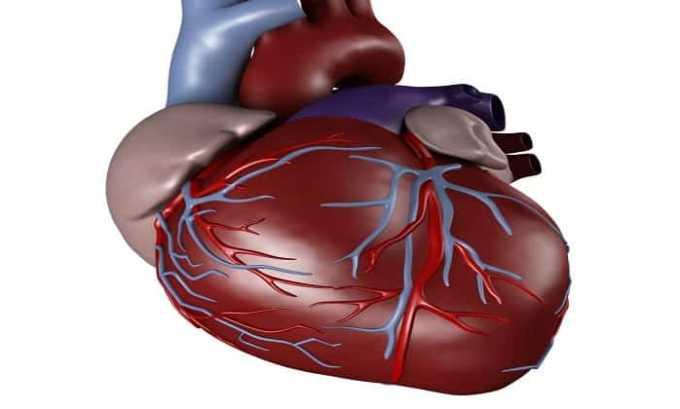 Прием препарата показан при хронической сердечной недостаточности