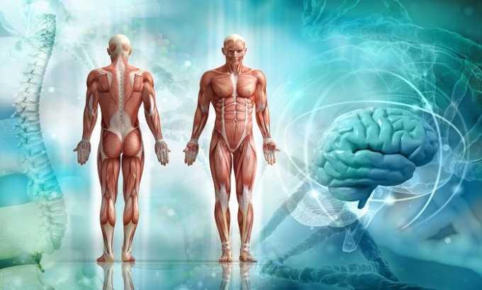 Препарат Валин способствует набору мышечной массы
