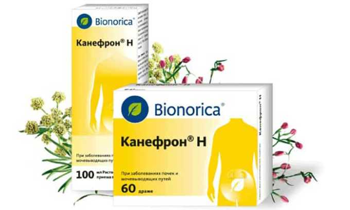 Препарат Канефрон содержит экстракты любистока, розмарина и золототысячника, обладающие противовоспалительным, мочегонным и заживляющим действием