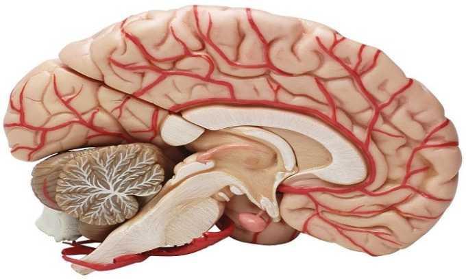 Препарат принимают при при нарушениях мозгового кровообращения