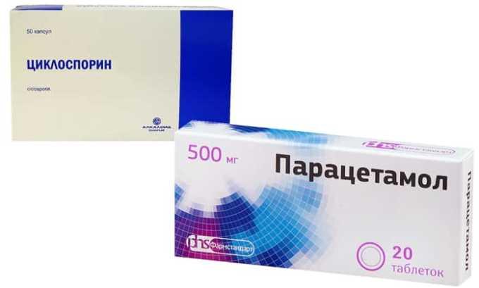 Парацетамол и циклоспорин ведут к проявлению нефротоксическых эффектов