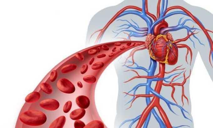 Лекарство не назначают пациенту, у которого имеются болезни кровеносной системы