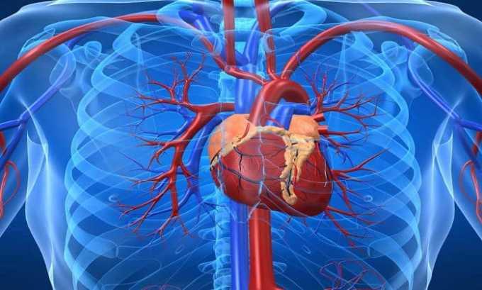 Средство не применяют при наличии заболеваний сердца