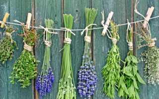 Применение различных травяных сборов для лечения цистита