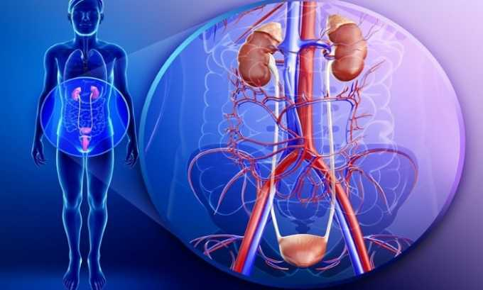 Прием препарата запрещен при тяжелых заболеваниях мочеполовой системы