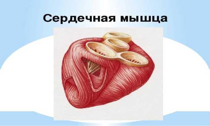 Препарат следует принимать с осторожностью при нарушении в работе сердечной мышцы