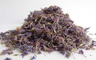 Применение иван-чая в терапии цистита