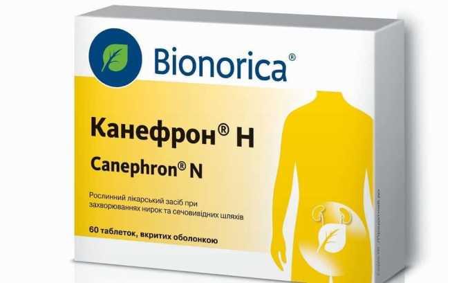 Препарат Канефрон на основе любистока, золототысячника и розмарина обладает мочегонным, противовоспалительным и антисептическим эффектом