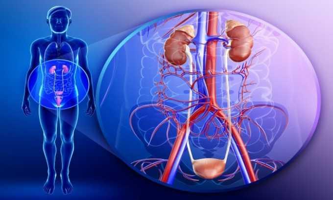 Препарат назначают при заболеваниях мочевыводящих путей