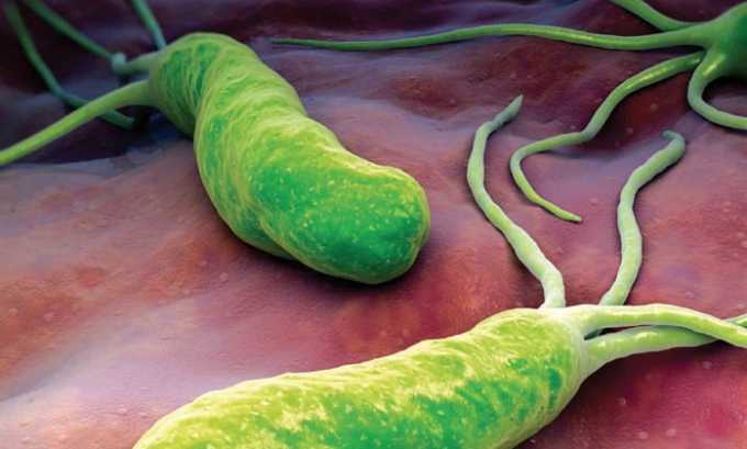Препарат показан при воспалительных болезнях желудочно-кишечного тракта, вызванные патологическим ростом Helicobacter pylori
