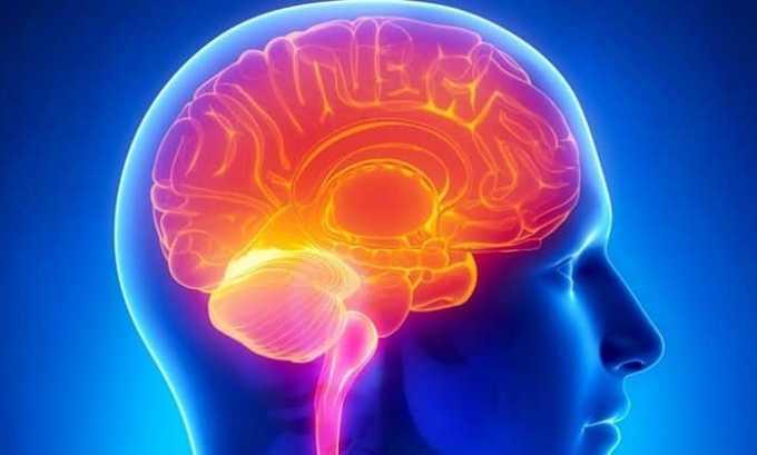 Глицин Актив препятствует развитию патологий кровоснабжения головного мозга при ишемическом инсульте