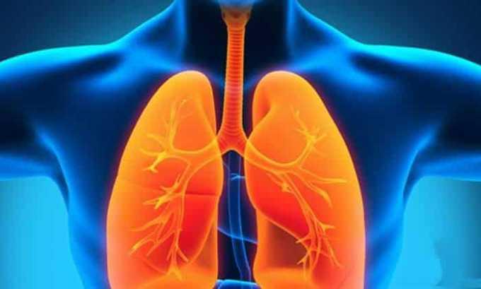Препарат назначают при заболеваниях нижних отделов дыхательного тракта