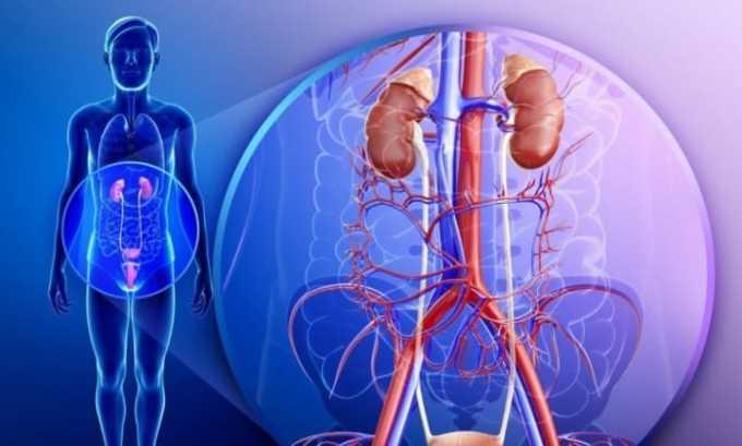 При приеме препарата пациентами, имеющими заболевания выделительной системы, требуется постоянный контроль функций почек