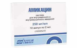 Результаты применения Амикацина при инфекционных заболеваниях мочевыводящих путей