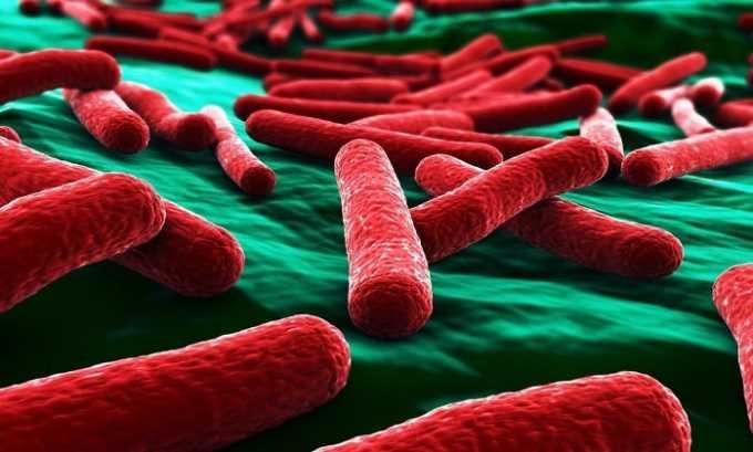 Установлено, что инфекционный цистит в 90% случаев вызывается попаданием в пузырь кишечной палочки
