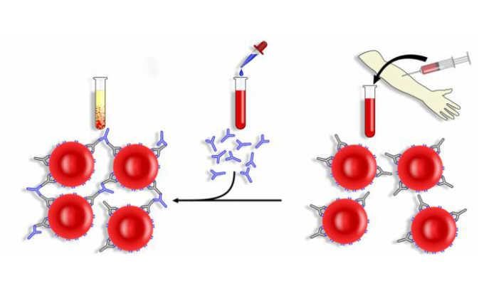 Препарат может спровоцировать ложноположительную прямую реакцию Кумбса