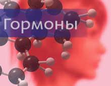 Гормоны почек — виды гормонов и их функции