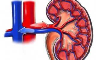 Почечная давление (гипертония): причины, симптомы и лечение