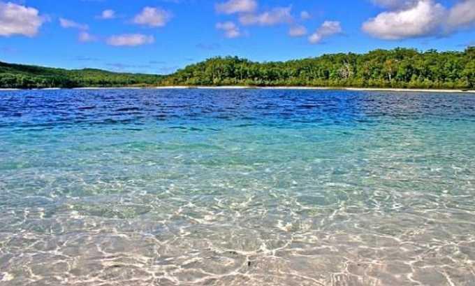 Место для купания должно быть тщательно подобрано: вода не должна быть грязной