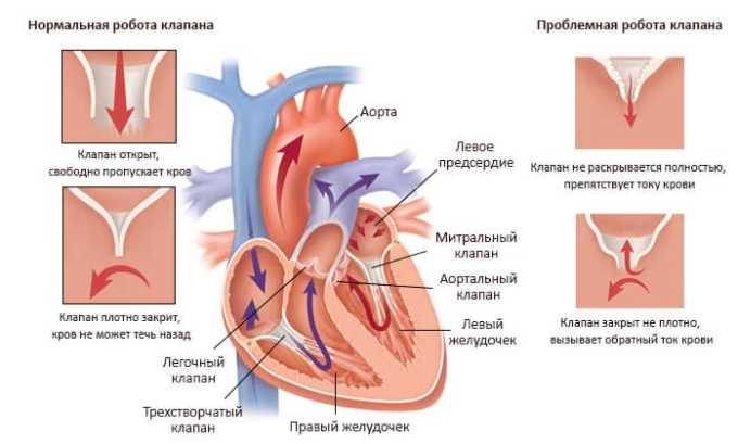 Применять средство для проведения терапии следует при высоких сердечно-сосудистых рисках у пациентов