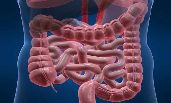 Амоксициллин противопоказан при тяжелых инфекционных заболеваниях ЖКТ