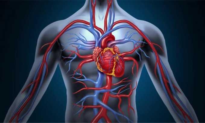 При заболеваниях сердечно сосудистой системы препарат не назначают