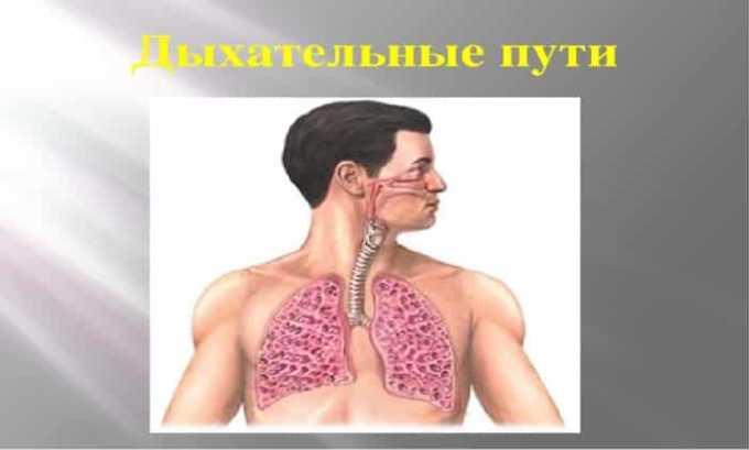 Препарат в форме драже применяют при системных заболеваниях дыхательных путей