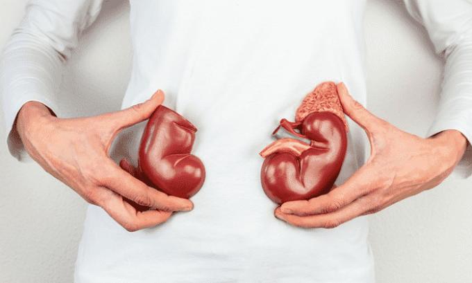 Гидрохлоротиазид помогает при почечной недостаточности легкой и средней степени выраженности