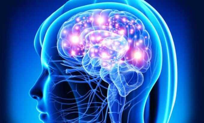 Совместный прием препаратов способствует комплексному положительному воздействию на деятельность головного мозга и центральной нервной системы