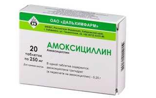 Как лечить заболевания почек средством Амоксициллин?