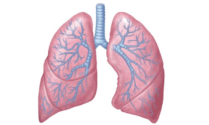 Применение лекарства в отдельных случаях приводит к неинфекционному пневмониту