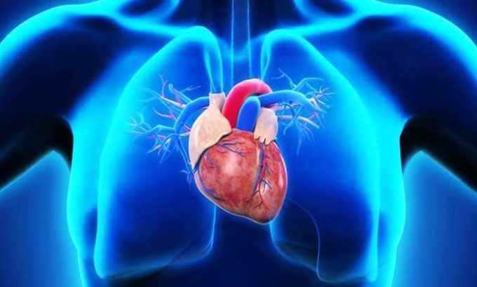 Кальций, содержащийся в лекарстве, необходим для обеспечения регуляции работы сердечной мышцы