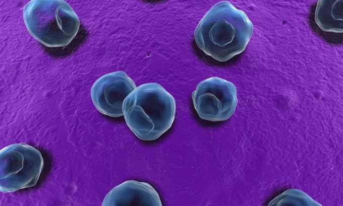 При хламидиозе можно применять препарат Спарфло