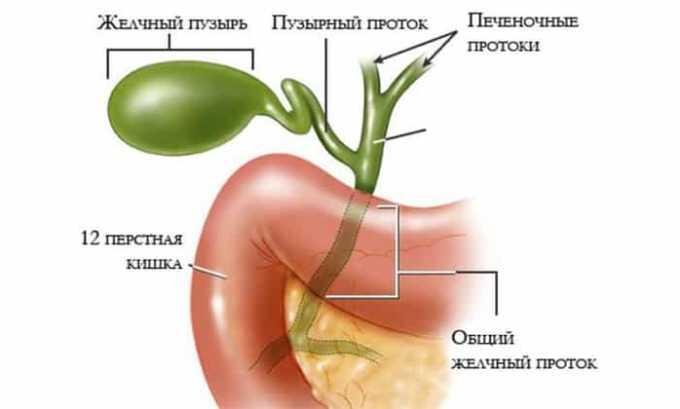 Лекарство показано при воспалении желчевыводящих путей и холецистите