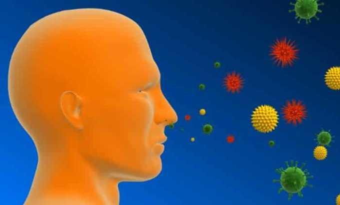 Некоторые инфекционные бактерии способны вызывать аллергический цистит