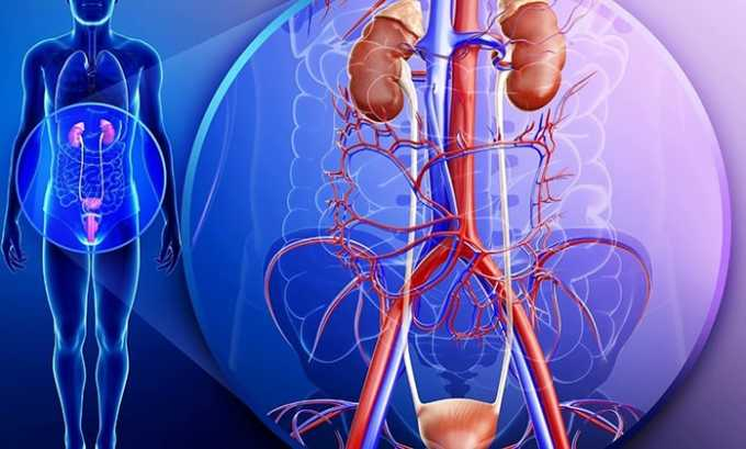 Препарат назначают при инфекциях мочевыводящих путей