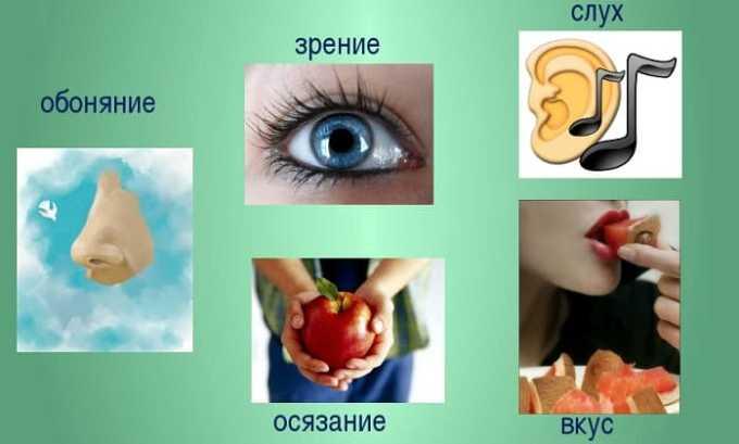Прием Офлоксацина 200 может повлечь за собой нарушения восприятия и чувствительности (расстройство вкуса, обоняния, зрения, слуха)