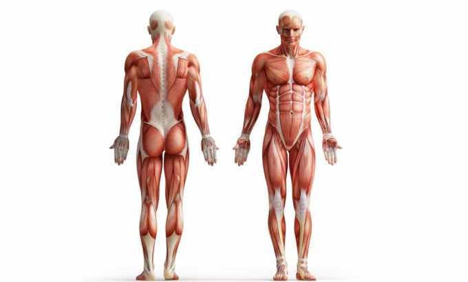 Использовать лекарственное средство можно для того, чтобы снять боль в мышцах