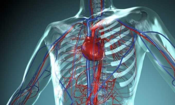 Препарат улучшает работу нервной и сердечно-сосудистой систем
