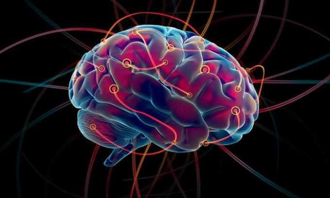 Тирозин способствует полноценной работе головного мозга