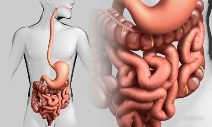 Флемоксин назначают при инфекциях желудочно-кишечного тракта