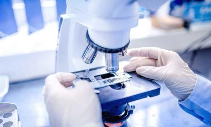 Микроскопические исследования позволяют выявить возбудителя инфекционно-воспалительного процесса