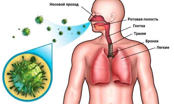 Лечение препаратом проводится при поражении дыхательных путей