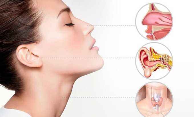 Панклав назначают для лечения инфекций и заболеваний ЛОР органов и дыхательных путей