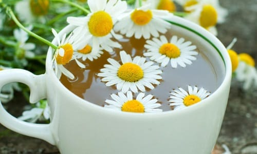 Ромашковый чай рекомендуют применять для лечения детей и беременных женщин