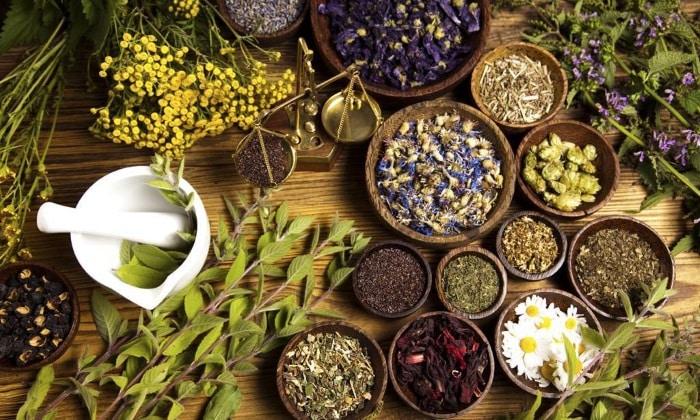 Самые эффективные травы для лечения простатита