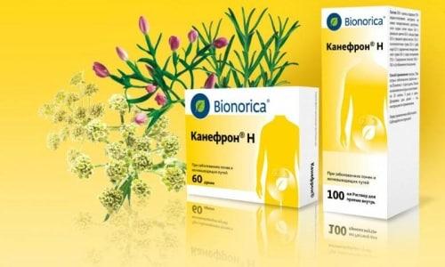Канефрон - препарат, который назначается при воспалительных заболеваниях мочевыделительных органов