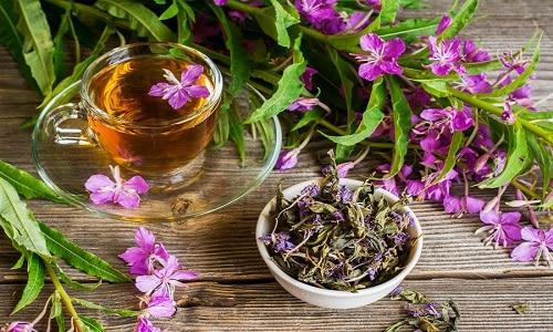 Цветки растения не только имеют приятный медовый аромат, который передается отвару, но и обладают ранозаживляющими свойствами