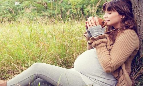 Высокое содержание микроэлементов делает кипрей полезным для будущей матери